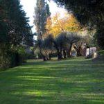 foto-giardino-villa-pignattelli